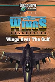 Wings Over the Gulf Poster
