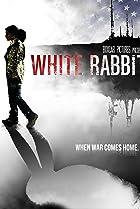Image of White Rabbit