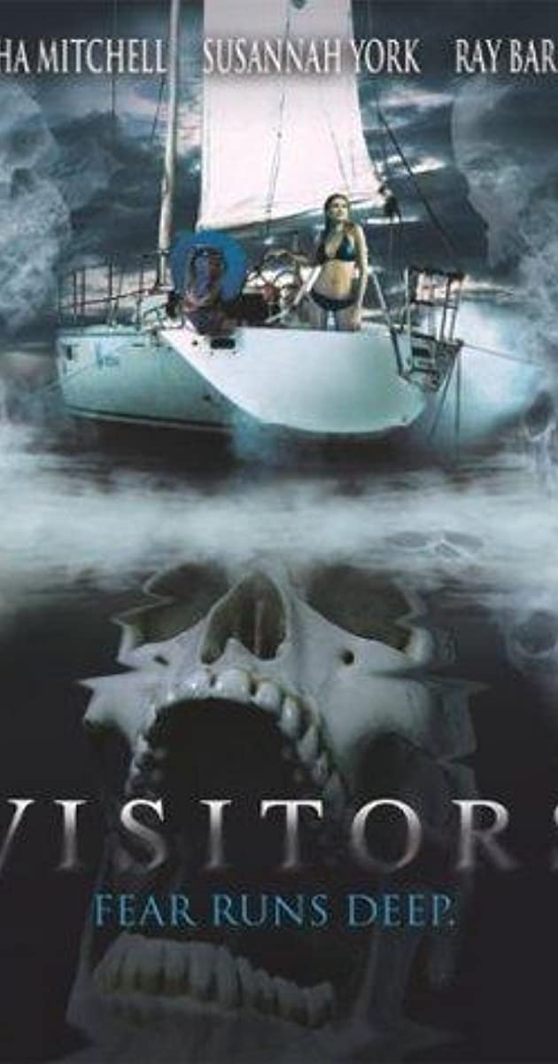 visitors 2003 imdb