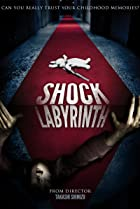 Image of The Shock Labyrinth 3D