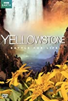 Image of Yellowstone