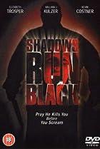 Image of Shadows Run Black