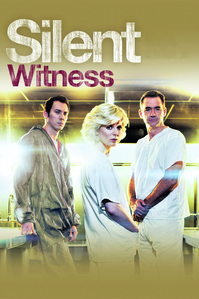 Image result for silent witness