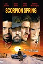 Image of Scorpion Spring