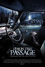 Lemon Tree Passage (2014)
