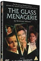 Image of The Glass Menagerie