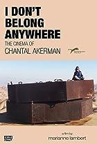 Image of I Don't Belong Anywhere: The Cinema of Chantal Akerman