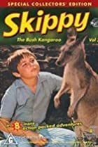 Image of Skippy