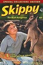Image of Skippy