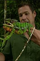 Image of The Jeff Corwin Experience: Madagascar: The Land That Time Forgot