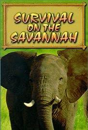 Untamed Africa Poster
