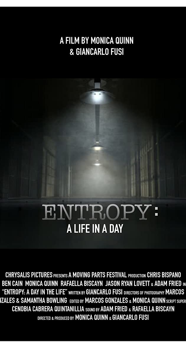 entropy a day in a life 2017 imdb