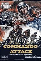 Image of Commando Attack
