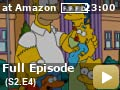 The Simpsons: Season 2: Episode 4 -- When a three-eyed fish is discovered in a downstream from Springfield's Nuclear Power Plant, the plant is hit with tremendous sanctions by state regulators.