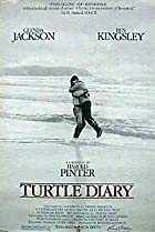Image of Turtle Diary