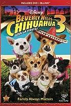 Image of Beverly Hills Chihuahua 3: Viva La Fiesta!
