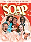 """Soap: (#2.1)"""