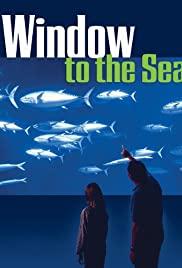 Window to the Sea Poster
