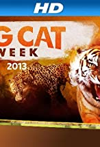 Primary image for Big Cat Week