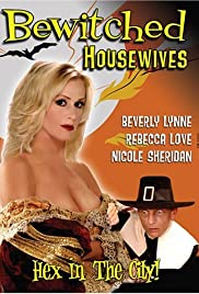 Bewitched Housewives Poster
