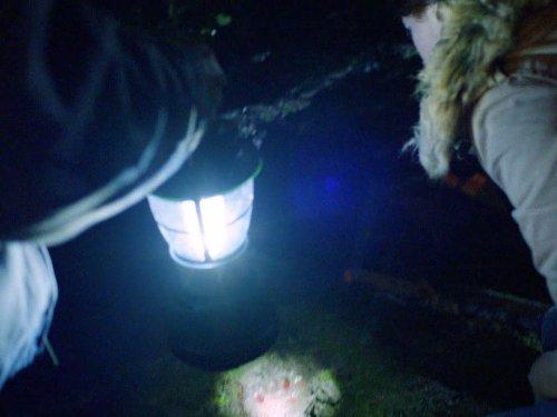 Grimm: Big Feet | Season 1 | Episode 21