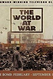 The Bomb: February-September 1945 Poster
