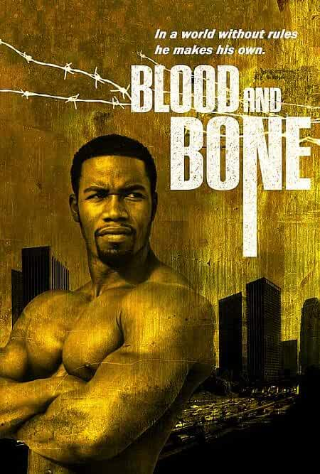 Blood and Bone 2009 Dual Audio 720p BluRay full movie watch online freee download at movies365.cc
