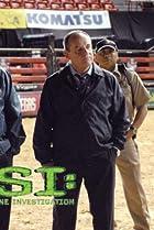 Image of CSI: Crime Scene Investigation: Bull