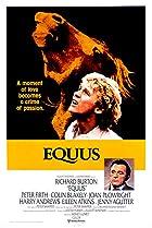 Image of Equus