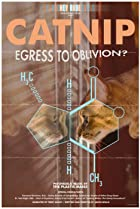 Image of Catnip: Egress to Oblivion?