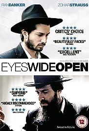 Einayim Petukhoth(2009) Poster - Movie Forum, Cast, Reviews