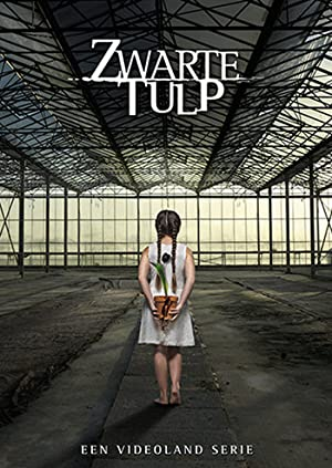 Zwarte Tulp - similar tv show recommendations