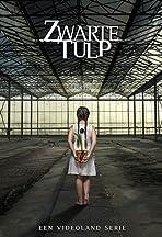 Zwarte Tulp