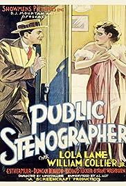 Public Stenographer Poster