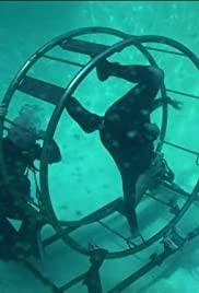 Inverted Underwater Car Poster