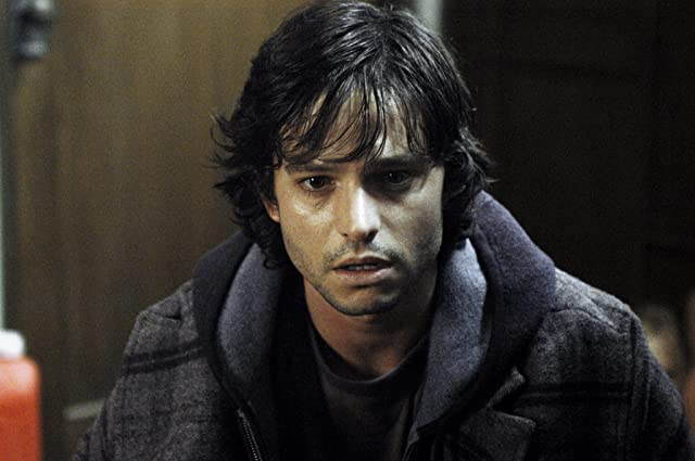 Jason Behr in The Grudge (2004)