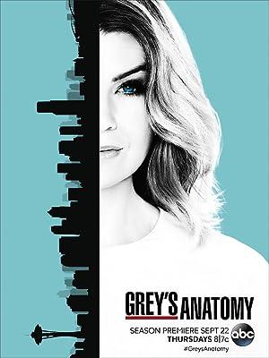 Greys Anatomy Temporada 13 Online