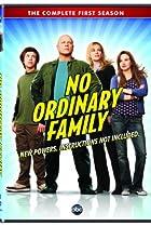 No Ordinary Family (2010) Poster