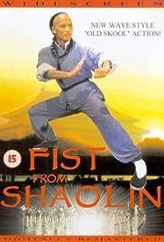 Huang Fei Hong zhi nan er dang bao guo Poster