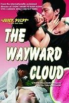 Image of The Wayward Cloud