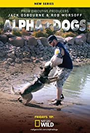 Alpha Dogs Poster