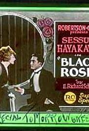 Black Roses Poster