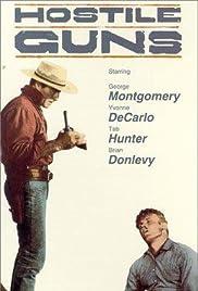 Hostile Guns(1967) Poster - Movie Forum, Cast, Reviews