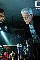 Image of CSI: Crime Scene Investigation: The Book of Shadows