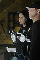 Image of CSI: Crime Scene Investigation: In a Dark, Dark House