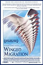 Image of Winged Migration