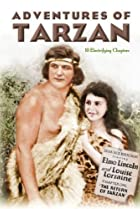Image of The Adventures of Tarzan