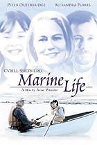 Image of Marine Life