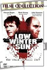 Low Winter Sun Poster