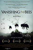 Image of Vanishing of the Bees